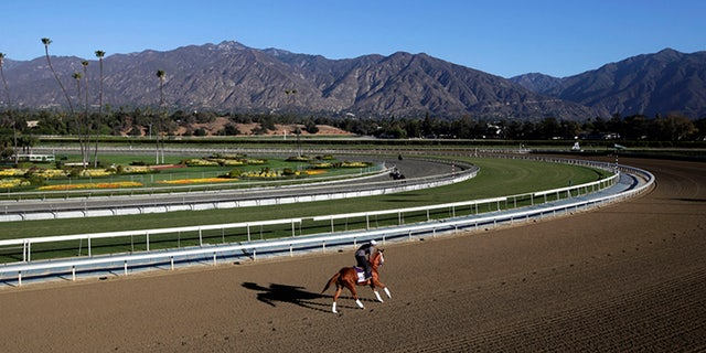 The Santa Anita Park has commissioned experts to test the surface of its race track. (Associated Press)