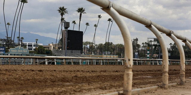 This March 7, 2019, file photo, shows the empty home stretch at Santa Anita Park in Arcadia, Calif. (AP Photo/Damian Dovarganes, File)