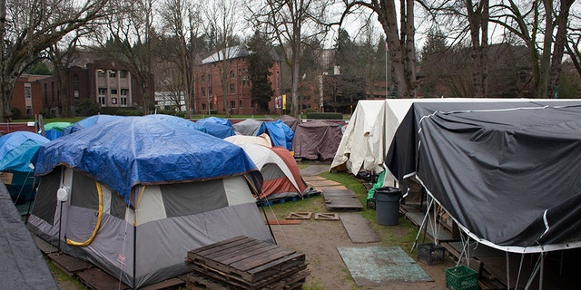 A homeless encampment is pictured in Seattle, Washington.
