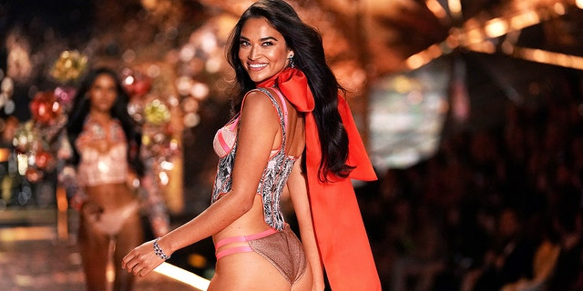 Shanina Shaik walks at the 2018 Victoria's Secret Fashion Show. The supermodel recently revealed that the Victoria's Secret Fashion Show won't happen in 2019.