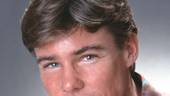 'Airwolf' star Jan-Michael Vincent dead: report
