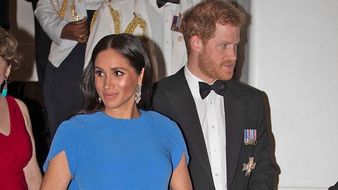 Prince Harry, Meghan Markle carbon footprint fixer blasts celebrity private jet use