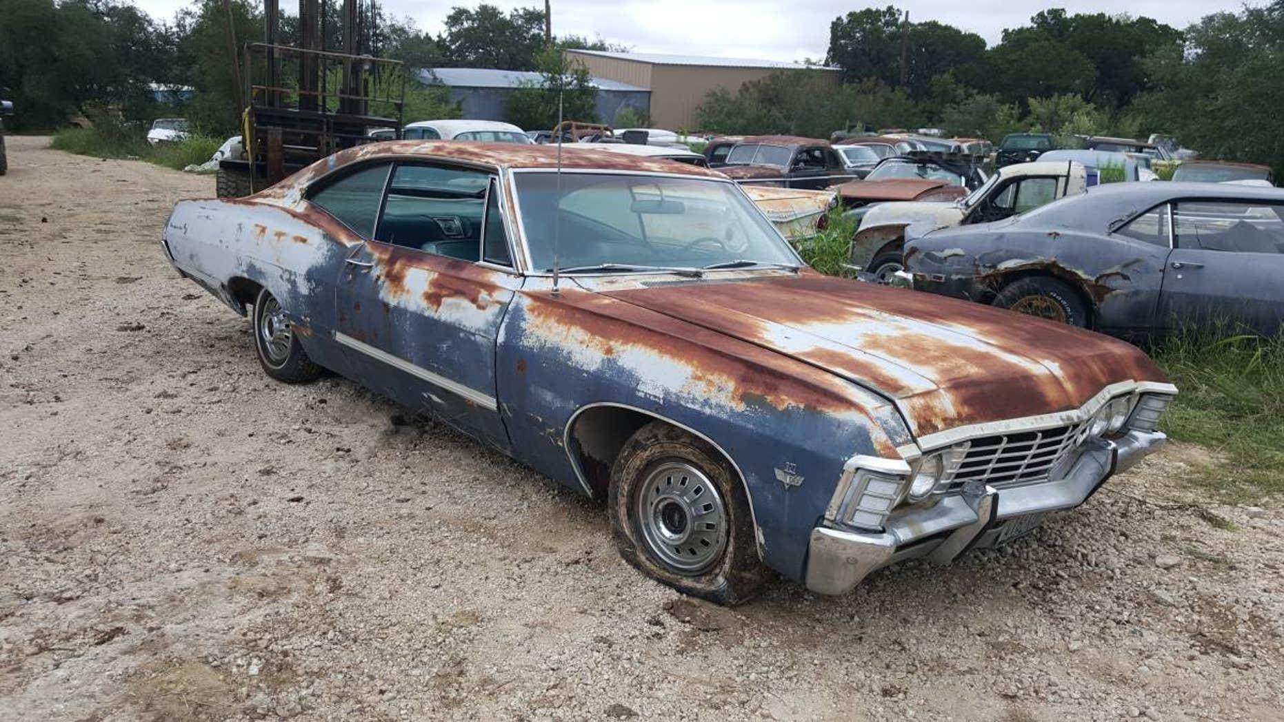 Cancer Survivor's 250 Car Collection