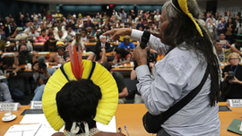 Brazil's congress receives indigenous leaders amid protests