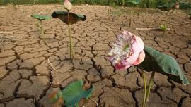 Cambodian schools shorten hours to cope with heat wave