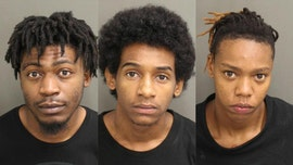 Florida thieves use sledgehammers to steal over $340G of jewelry: police