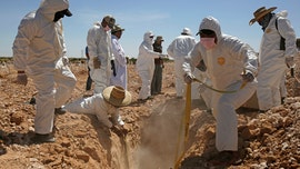 Cartel member leads Mexican authorities to secret mass grave