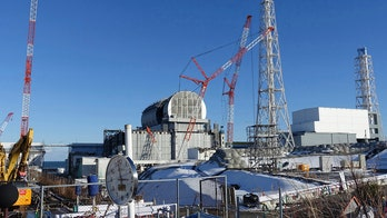 Fukushima plant operator begins removing fuel from melted reactor