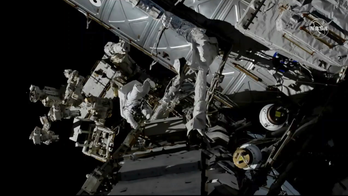 The ISS is chock-full of bacteria and fungi: study