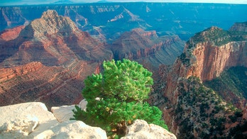 Grand Canyon visitor, 70, dies in fall from edge, authorities say