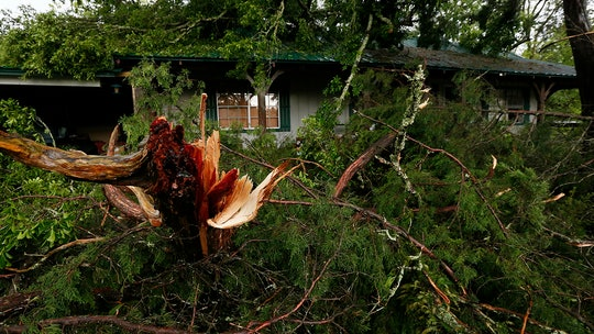 Florida girl, 8, dies after tree falls on home during strong storms; death toll rises to 4 across South