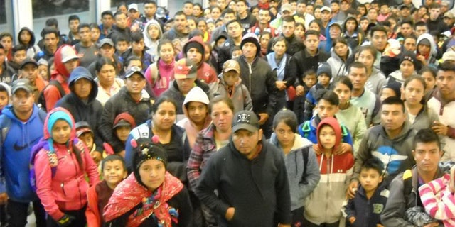 This is the group of 230 undocumented immigrants apprehended today in Antelope Wells. (US Border Patrol)