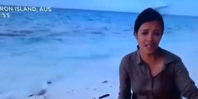"""Presenter Liz Bonnin of BBC's """"Blue Planet Live,"""" was concluding the program when a seagull appeared to eat a baby turtle during a live broadcast."""
