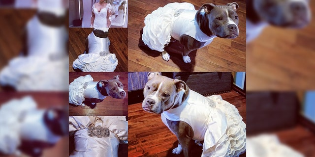 Bailey is looking wedding ready in her chic outfit.