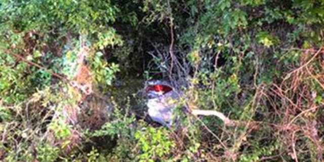 Chris Miracle, 26, saw flashing lights early Wednesday morning when he was driving his tow truck. When he stopped and investigated the volunteer firefighter found a 77-year-old woman trapped in her vehicle going into a creek.