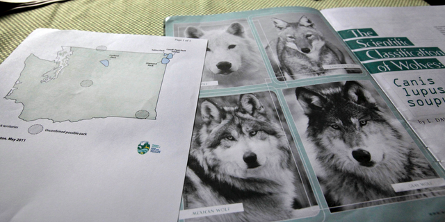 FILE - This June 18, 2011 file photo shows a map of confirmed and possible wolf packs in Washington state next to a magazine about wolves on the kitchen table of Ray Robertson, who is both both a volunteer for Conservation Northwest and a contractor for the U.S. Forest Service, near Twisp, Wash. On Thursday, April 4, 2019, the Washington Department of Fish and Wildlife said the number of gray wolves in Washington state continued to grow in 2018, and the state for the first time has documented a pack living west of the Cascade Range. (AP Photo/Elaine Thompson, File)
