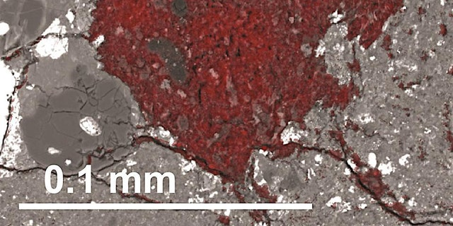 The carbon-rich fragment the material comets are built from is colored red in this scanning electron microscope image. The scale bar shows its size. (Credit: Larry Nittler/Carnegie Institution for Science)