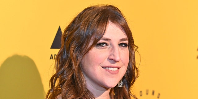 Actress Mayim Bialik is a real-life neuroscientist and left acting for a period of time to chase her passion of teaching.
