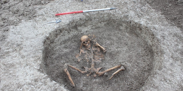 A womanlike skeleton was found with a feet cut off and placed by her side with arms firm behind her head. (Thames Water)