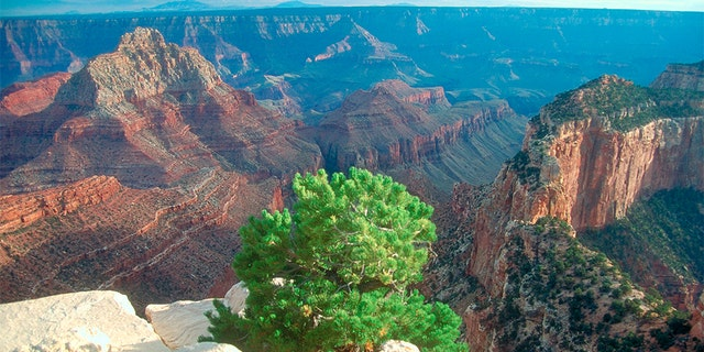 According to the authorities, there is another Visitors died falling from the edge of the Grand Canyon. (MyLoupe / UIG via Getty Images)