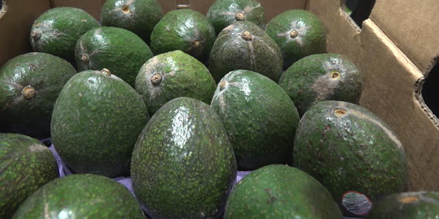 """""""It's going to be felt at the grocery stores when we start paying more for limes and our avocados at the grocery store,"""" Contreras said."""