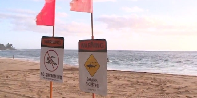 Shark warning signs have been posted on beaches near Waikoloa, Hawaii after a woman was bitten by a shark on Tuesday.
