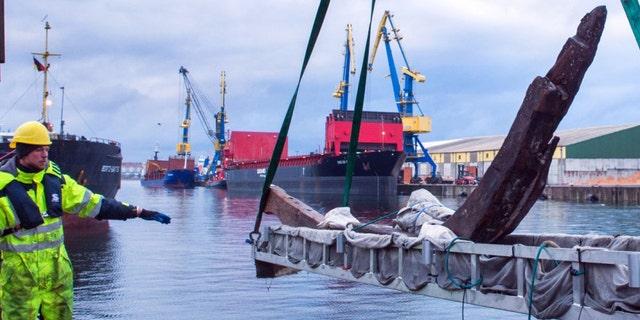 One of the ship's timbers recovered from wrecksite. (Landesamt für Kultur und Denkmalpflege Mecklenburg-Vorpommern)