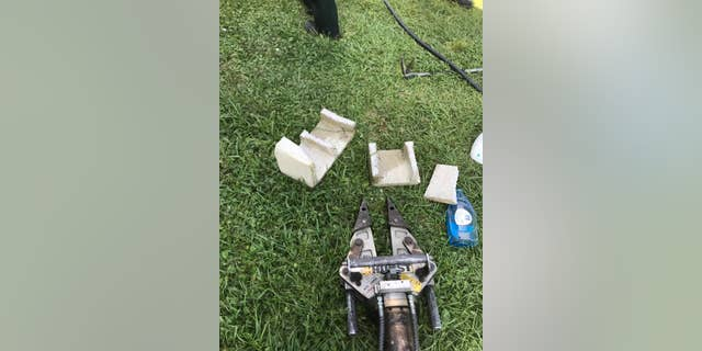 Florida firefighters were forced to use the Jaws of Life after a Rottweiler puppy got her head stuck in a cinder block on Saturday.