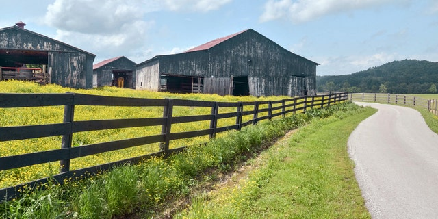 Westlake Legal Group iStock-897461394 Kentucky barns are being raided to fuel 'farmhouse chic' trend Janine Puhak fox-news/lifestyle fox-news/house-and-home fox news fnc/real-estate fnc article a4fc64bd-cdf2-5031-a3bb-365d31e275e2 /FOX NEWS/LIFESTYLE/REAL ESTATE