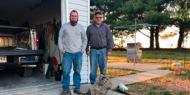 This April 15, 2019 photo shows Joe Schepman, right, and his son, Brad, standing with the remains of a mastodon found on their property in Seymour, Ind. Atlas Excavating recently discovered the remains of a mastodon on property owned by Schepman. The remains include the majority of a tusk, part of a jawbone with teeth, two upper leg bones, a vertebrae, a joint and part of the skull. The tusk was split into two pieces and together made up about a third of the tusk. (Jordan Richart/The Tribune via AP)