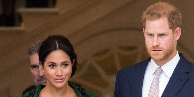 British journalist Angela Levin says Prince Harry has been incredibly supportive of his wife Meghan Markle.