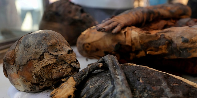 Two mummies, of a woman and child, are on display at the newly discovered burial site, the Tomb of Tutu, at al-Dayabat, Sohag, Egypt April 5, 2019. REUTERS/Mohamed Abd El Ghany