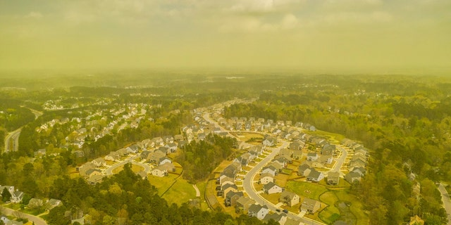 A thick, green cloud of pollen can be seen over Durham, North Carolina on Monday.