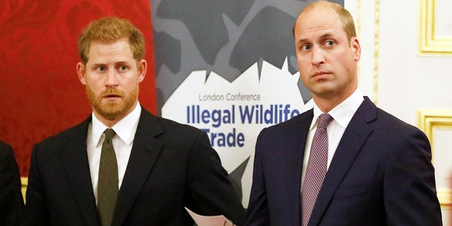 Prince Harry and Prince William are said to be feuding ever since Prince Harry's whirlwind romance with now-wife Meghan Markle began.