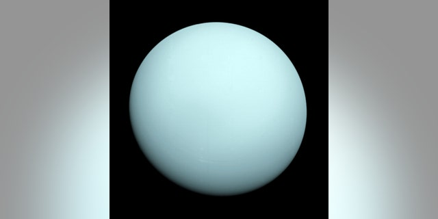 This is an image of the planet Uranus taken by the spacecraft Voyager 2, which flew closely past the seventh planet from the Sun in January 1986. (Credit: NASA)