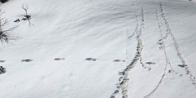 Footprints are seen in the snow near Makalu Base Camp in Nepal, in this picture taken on April 9. Mountaineers from the Indian army on expedition in Nepal have found mysterious large footprints in the snow that they think belong to the Yeti, or the abominable snowman, the military said on Tuesday.