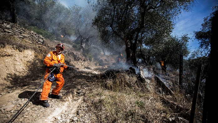 Italian students handed $30M fine after barbecue started massive forest fire