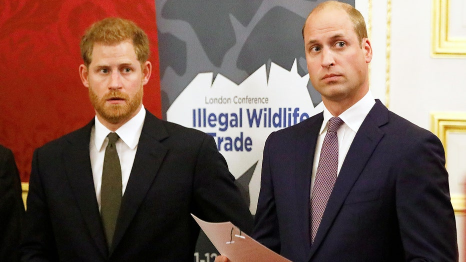 Prince William wants to reunite privately with Prince Harry before unveiling statue of Princess Diana: source