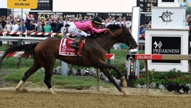 War of Will is victorious at the Preakness Stakes