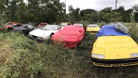 Family inherits field of forgotten Ferraris
