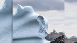 Stunning 'iceberg alley' pictures show colossal bergs passing by Canada's coast