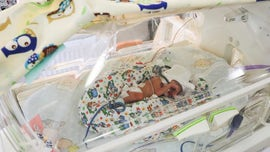 Poland sextuplets doing fine after premature birth