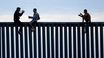 Ira Mehlman: Dems' 2020 budget proof that battle is not about 'the wall,' it's about immigration enforcement