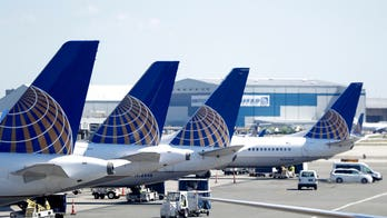 Ants march out of carry-on, ground United Airlines flight at Newark