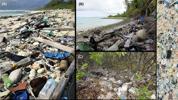 414 million pieces of trash found on remote islands near Australia, study finds