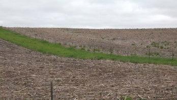 Hurt by US-China trade war, Iowa farmers hope hemp is their big-money savior