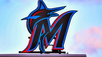 Miami Marlins executive mixed up in controversy over minor league team's clubhouse dogs: report