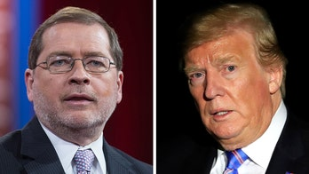 Norquist on Trump's trade agenda: 'Tariffs are damaging' to American farmers, consumers