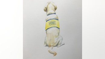 The Daily Spike: Canine Companions model for sketch artists at NYC's Society of Illustrators