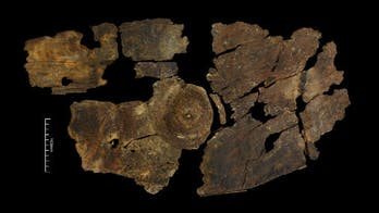 Amazing Iron Age shield discovery sheds new light on prehistoric weapons